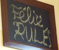 Felix Rules-w