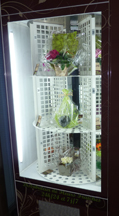 Flower vendor 2-w