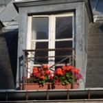 Paris window-w
