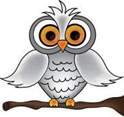 wise owl-w