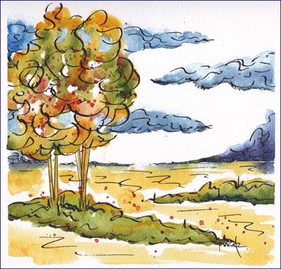 Tree In Canola Field-100-w