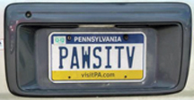 Pawsitiv License Plate from Pennsylvania
