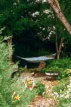 Photo of hammock in the shade